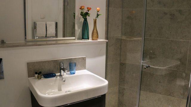 Banyan Flat 11-Bathroom-13