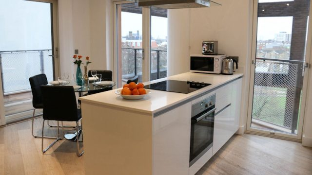 Banyan Flat 11-Kitchen-23